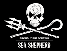 Grafik Banner von Sea Shepherd